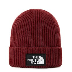 The North Face Logo Beanie Brick House Red